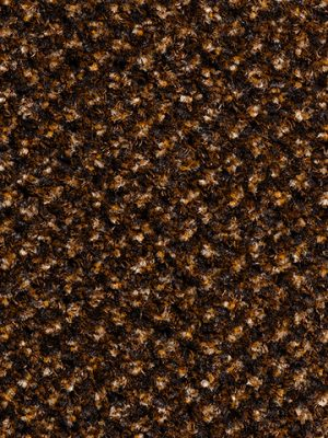 Schoonloopmat 578-Advance-PS-012-Brown-1
